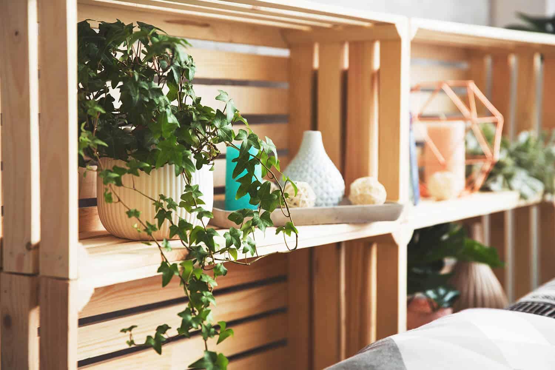 Build DIY and Sell Wall Shelves