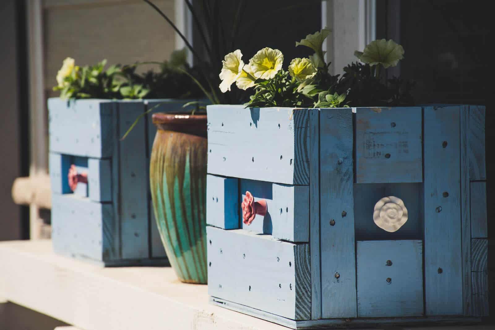 DIY Plant Boxes